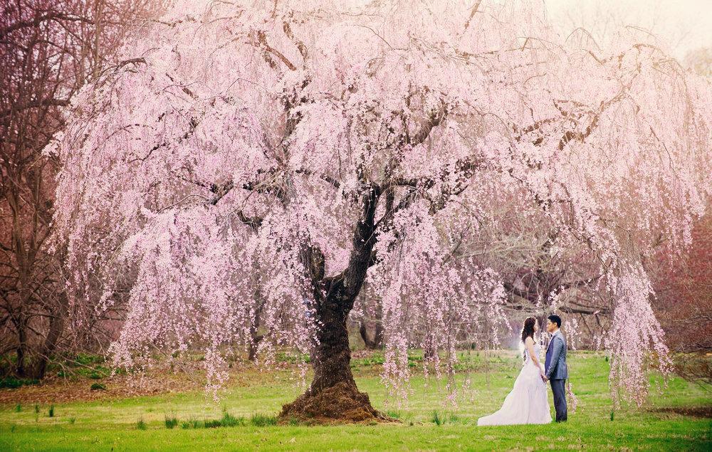 Chris_Hui_婚禮_婚紗照_pre_wedding_photography_best_162_.jpg