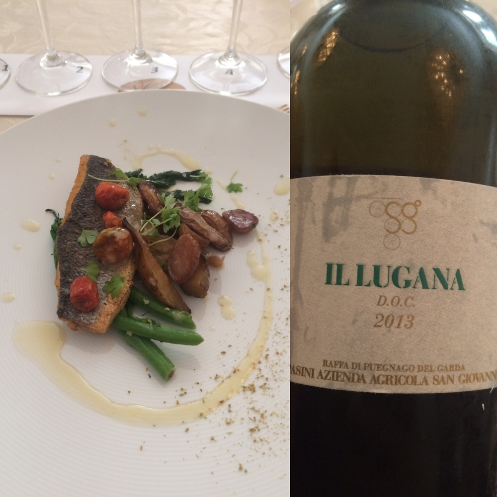 "A classic combination: Loup de Mer with Heirloom Potato Confit, Rapini, and Wilted Tomatoes, prepared by the Chef David Codney of the Peninsula Hotel, Beverly Hills, and served with 2013 Pratello ""Il Lugana,"" Lugana DOC, Italy"