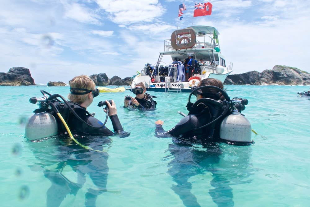 learn to dive bermuda PADI scuba courses.jpg