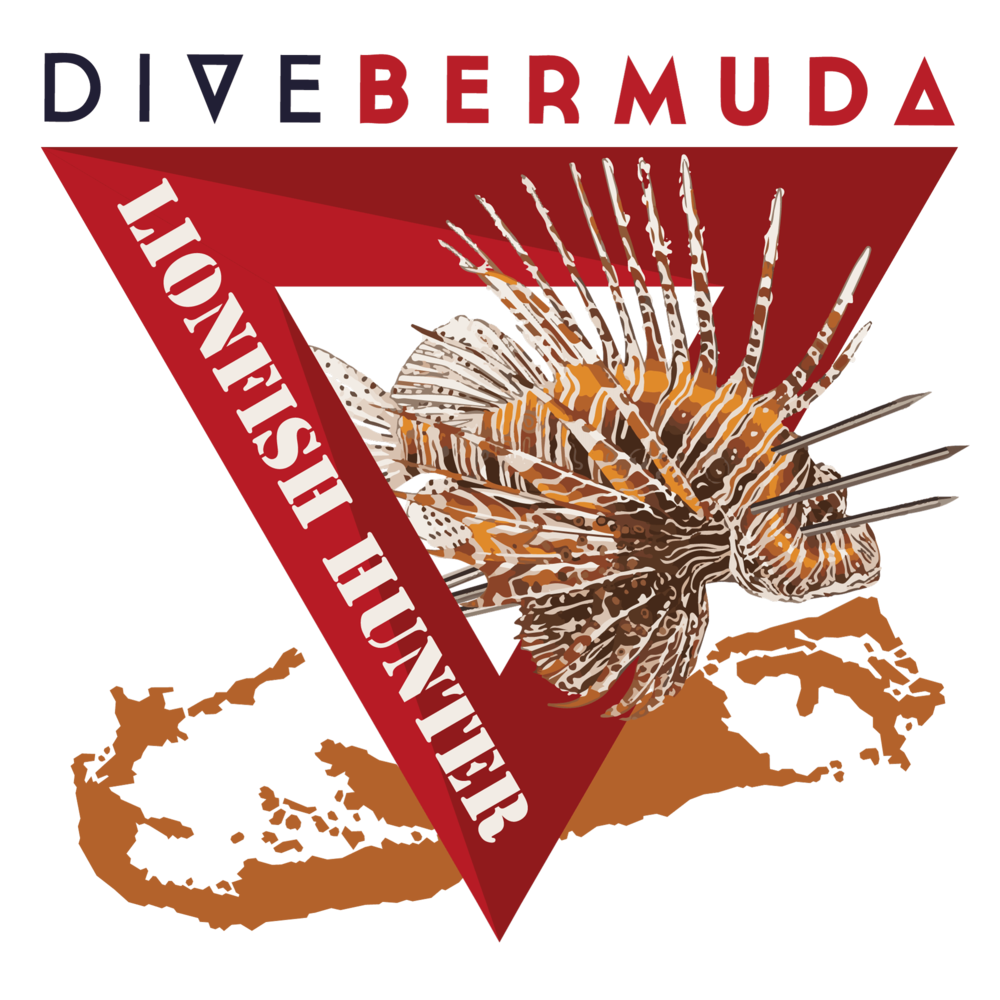 learn to hunt lionfish bermuda dive bermuda fairmont southampton invasion.jpg