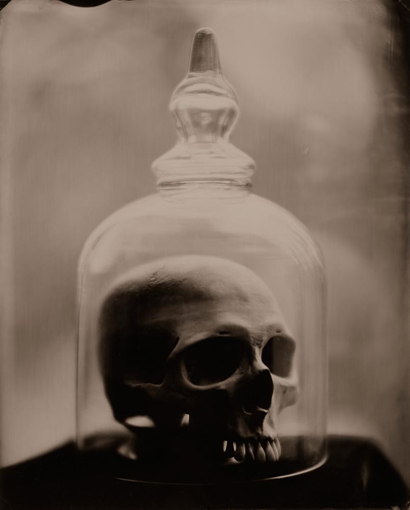 Bell Jar and Skull