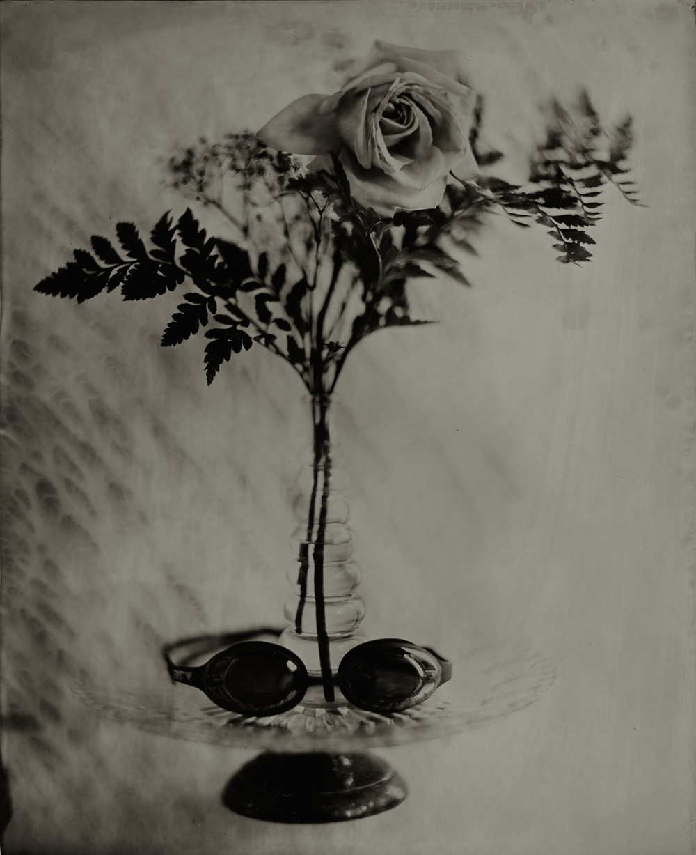 Gayle's Rose