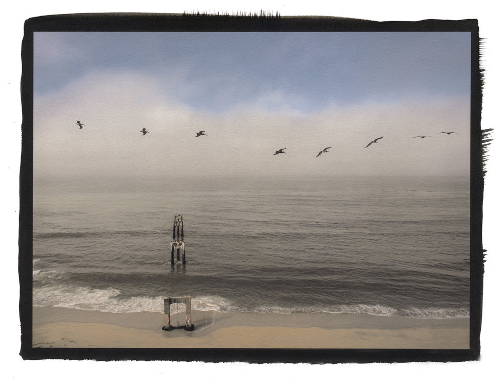 pelicans davenport 2014.jpg