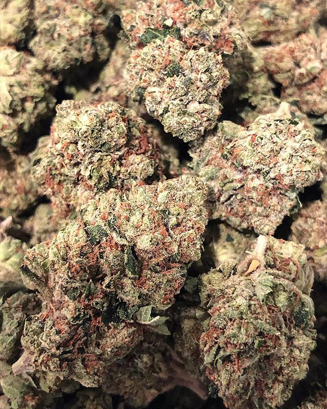 Firewalker OG 🔥 This is a sativa dominant cross of Skywalker OG and Fire OG. Great for daytime use with many medicinal properties, these dense buds have a heavy gas like aroma and will be added to our menu within the next week.
