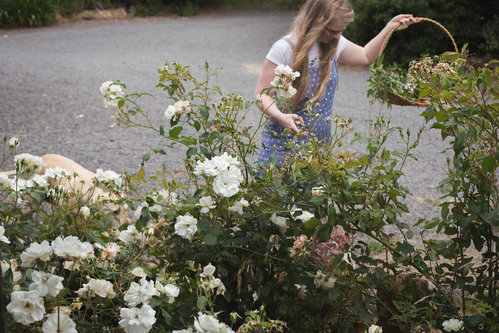 Floral post-7.jpg