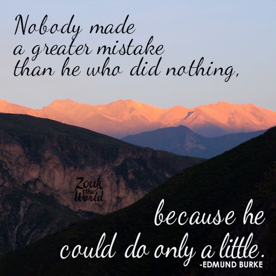 Nobody made a greater mistake than he who did nothing, because he could only do little. - Edmund Burke