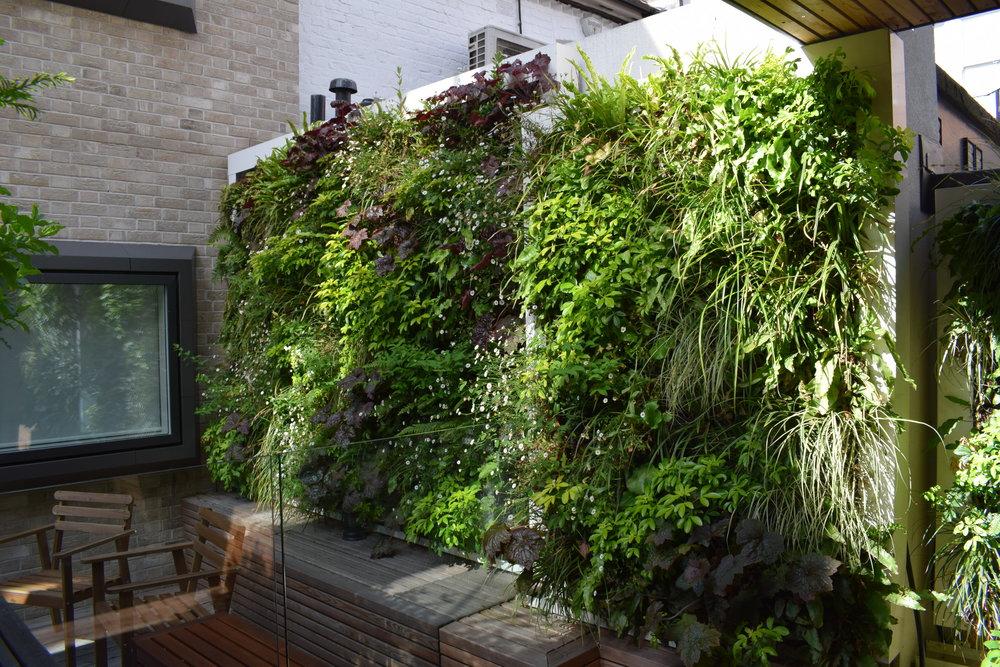 Shaftesbury Neal's Yard (8).jpg