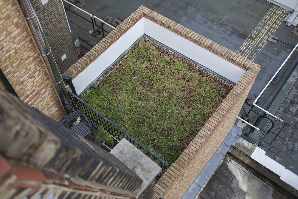 80 Mortimer Street - Extensive Green Roof.
