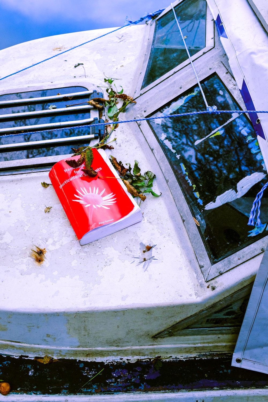 Fuji Autumn 17 LR-8.jpg
