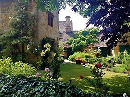 vine-garden.jpg