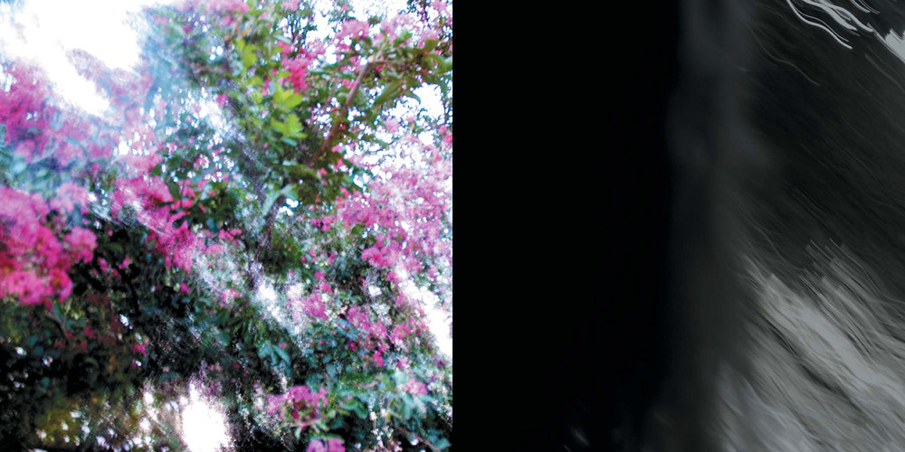 Self-Portrait II [Diptych]  Giclee print with metallic pigment and varnish 18 X 36 inches 2007