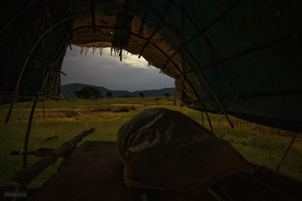 Night post , Some farm at Tamhini.