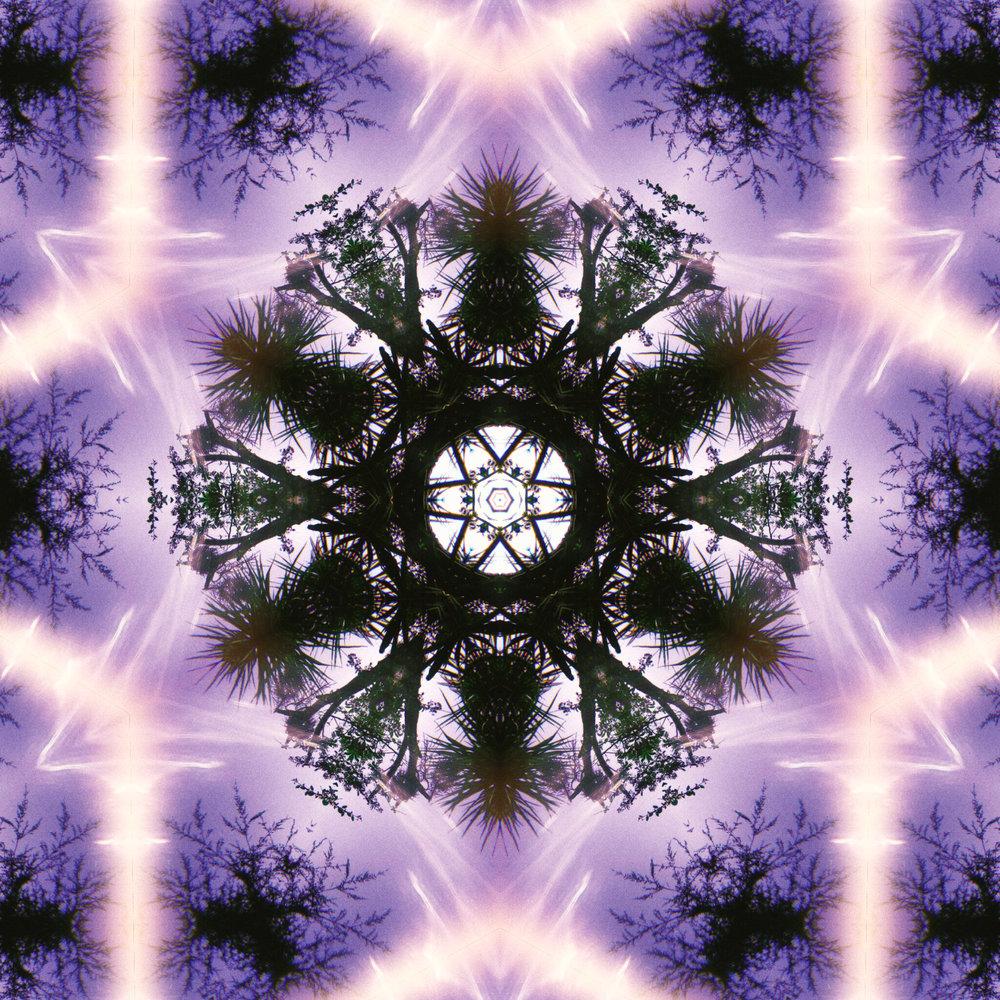 80038_mirror14.jpg