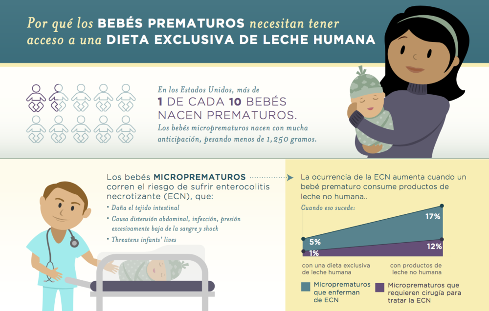 Infographic in Spanish