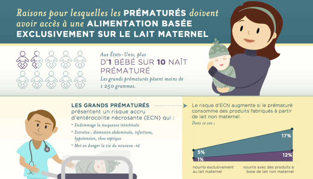 Infographic in French