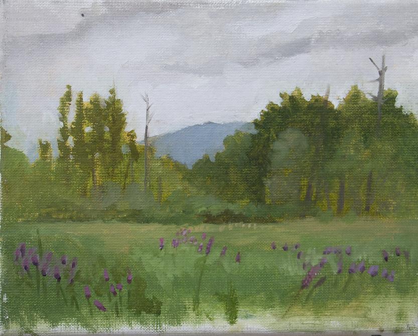 Berkshires #2