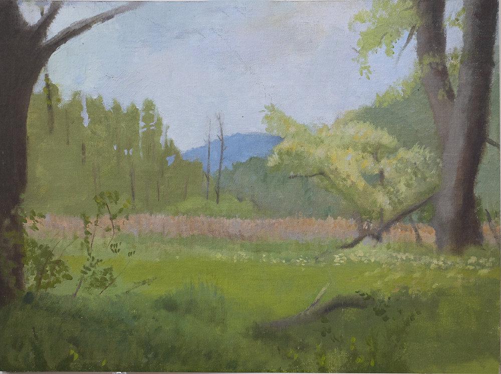 Berkshires #4