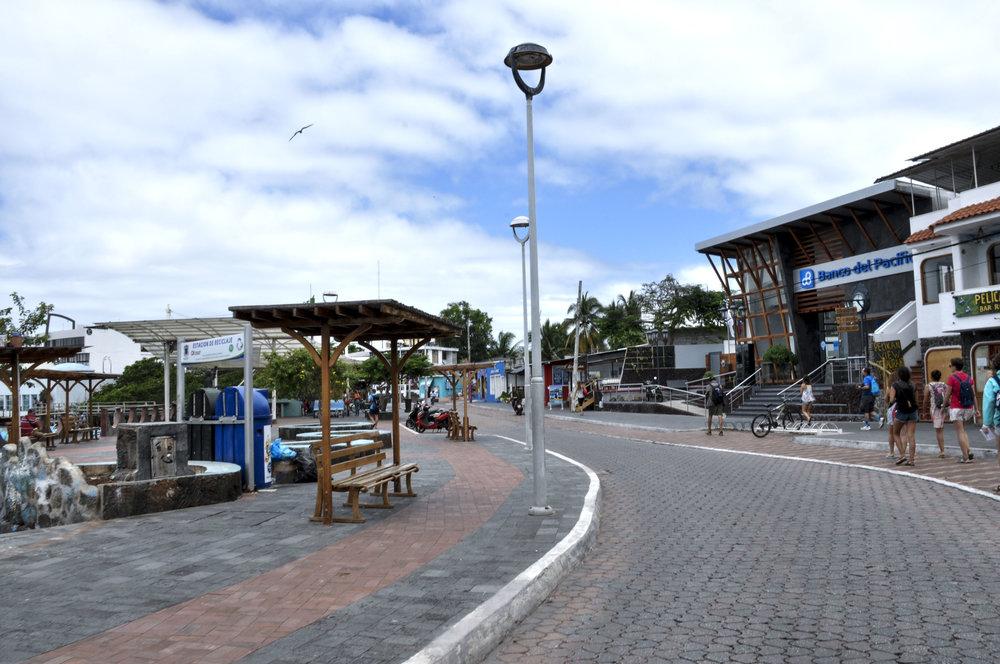 Santa Cruz Galapagos Day 1 edited.jpg