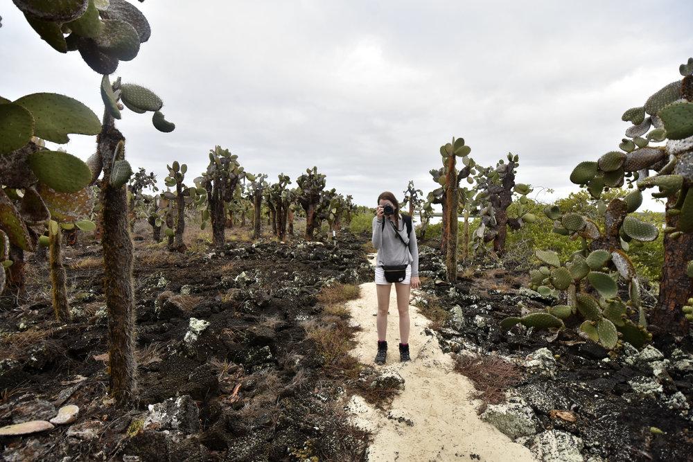 Tortuga Bay Galapagos Day 3 edited.jpg