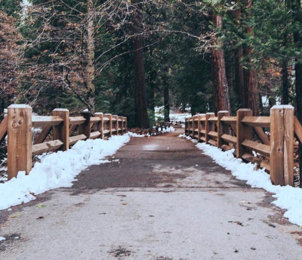 Resolution 26: Find the road worth taking.