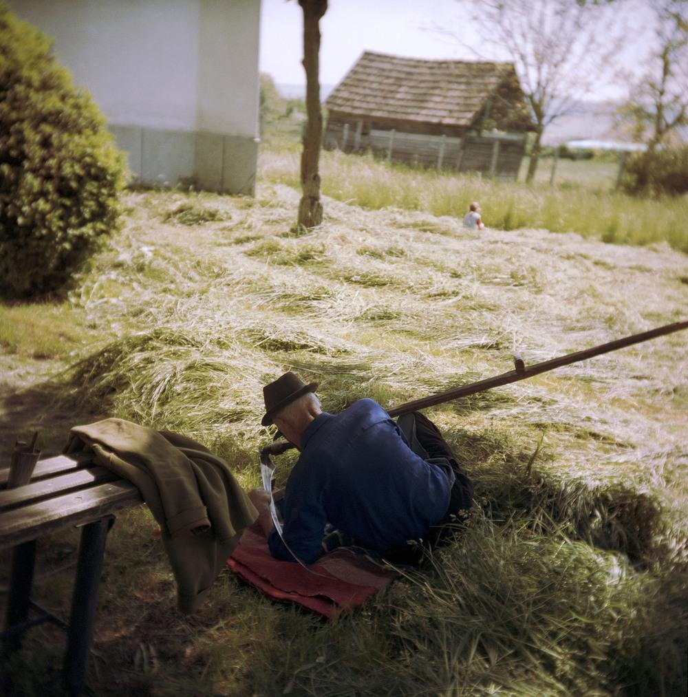 Garden (Sárpatak, Romania, 2005)