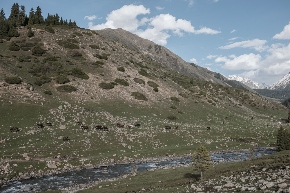 glacierkyrgyz