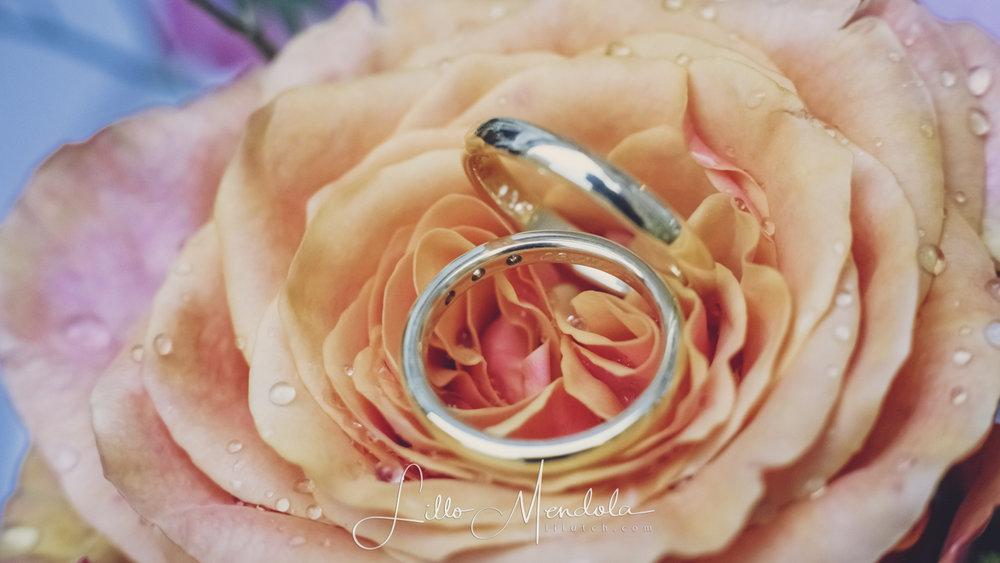 Contactez-moi! - A la recherche d'un photographe de mariage?Réservez votre un rendez-vous gratuit et sans engagement en remplissant le formulaire ci-dessous.