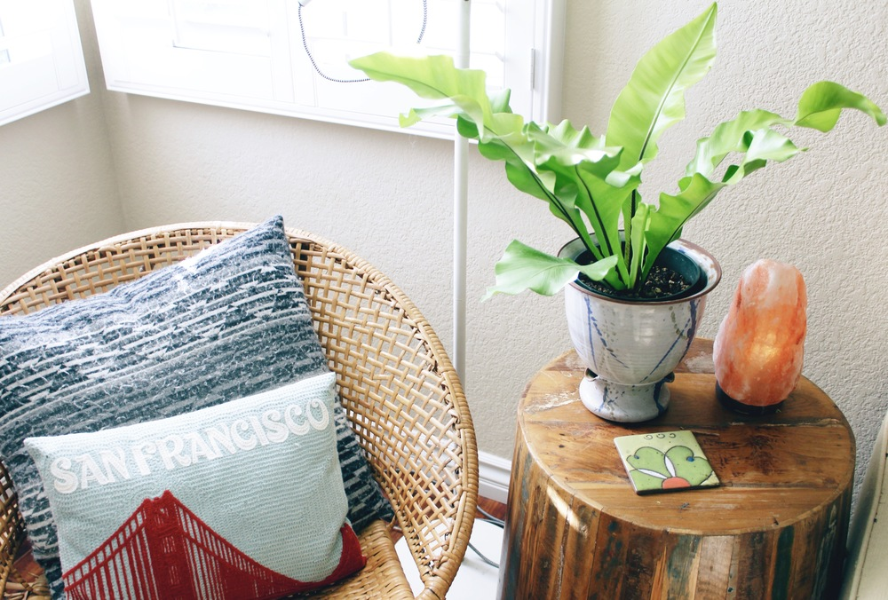 I added this Birds Nest Fern to my side table + it adds so much life to this space, + also kitty safe!