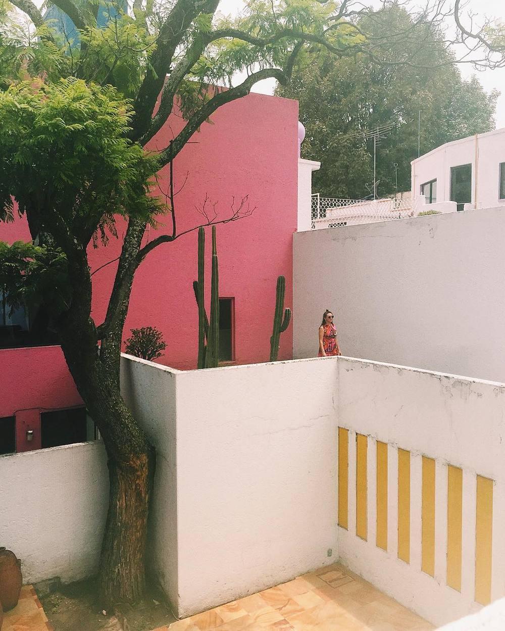 Color Love | The Trifecta | Mustard, Blush + Dew | www.foundandkept.com