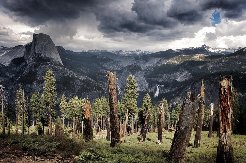 Yosemite ESG2.jpg