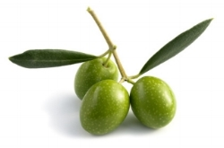 Olive Oil for Natural Skin Care and Tanning