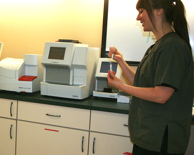 In Hospital Laboratory
