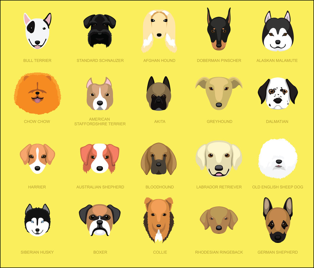 Dog Breeds [Page 2]