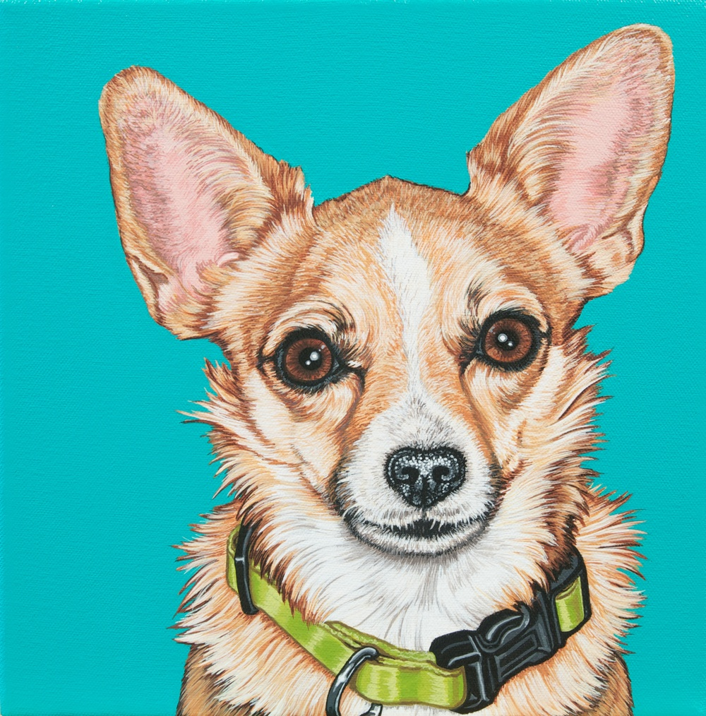 """Andy"", latex enamel on canvas, 10""x 10"", 2014"