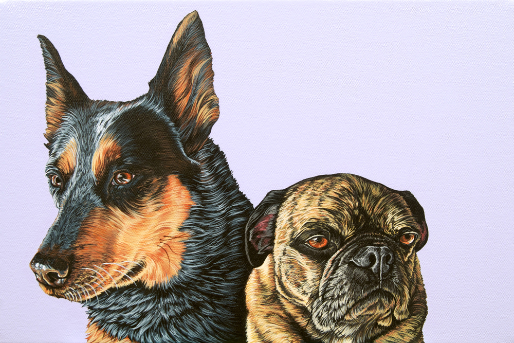"""Bella and Chewy"", latex enamel on canvas, 12""x 18"", 2014"