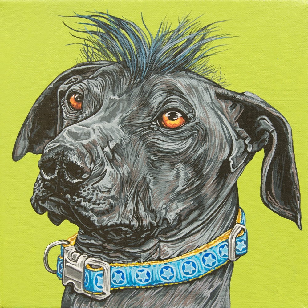 """Braden"", latex enamel on canvas, 8""x 8"", 2014"