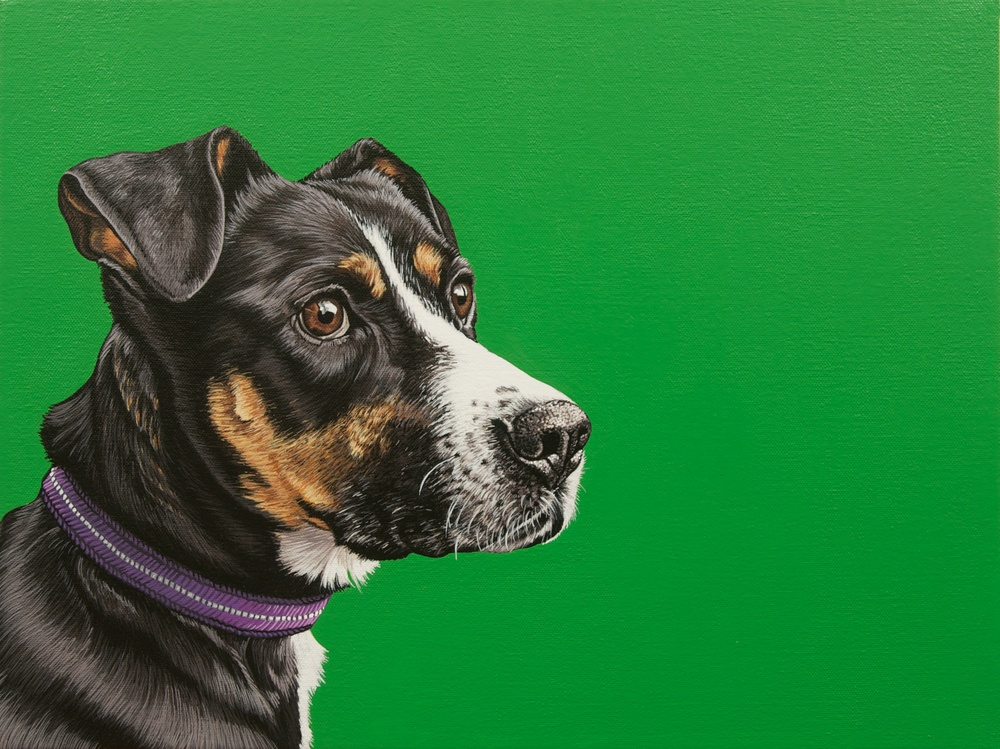 """Greta"", 12""x 16"", latex enamel on canvas, 2014"