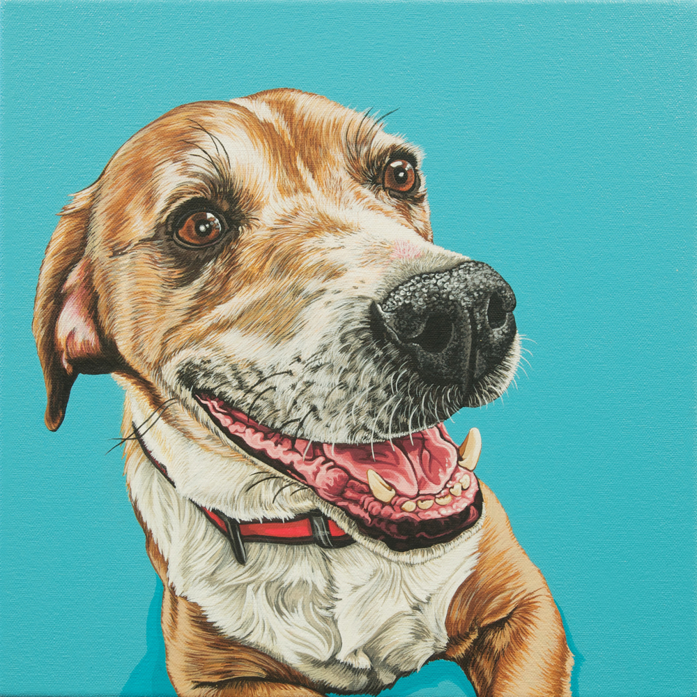 """Jack"", latex enamel on canvas, 16""x 16"", 2014"