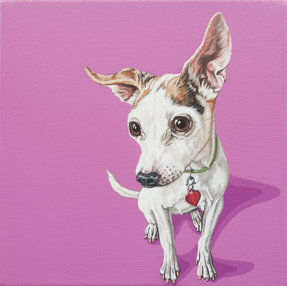 """Wiggles"", 12""x 12"", latex enamel on canvas, 2014"
