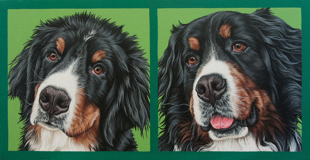 """Parker"" (puppy + adult diptych), latex enamel on canvas, 10"" x 19"", 2015"