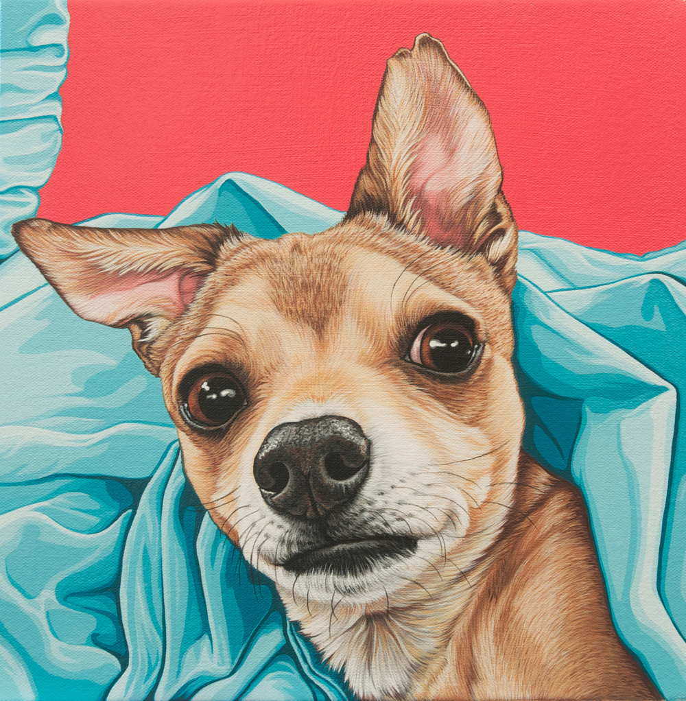 """Bruno"", latex enamel on canvas, 12""x 12"", 2015"