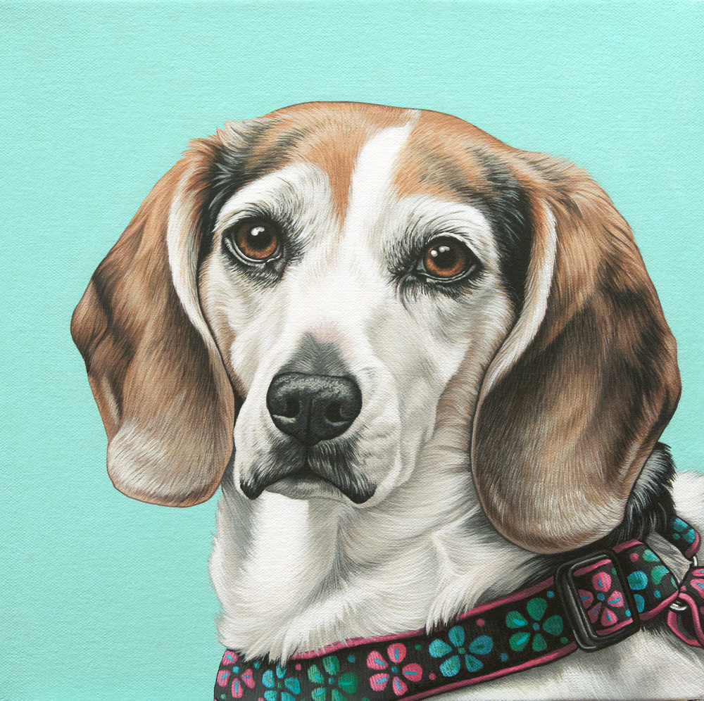 """Sammy"", latex enamel on canvas, 12""x 12"", 2016"