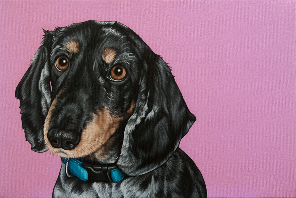 """Millie"", latex enamel on canvas, 11"" x 15"", 2016"