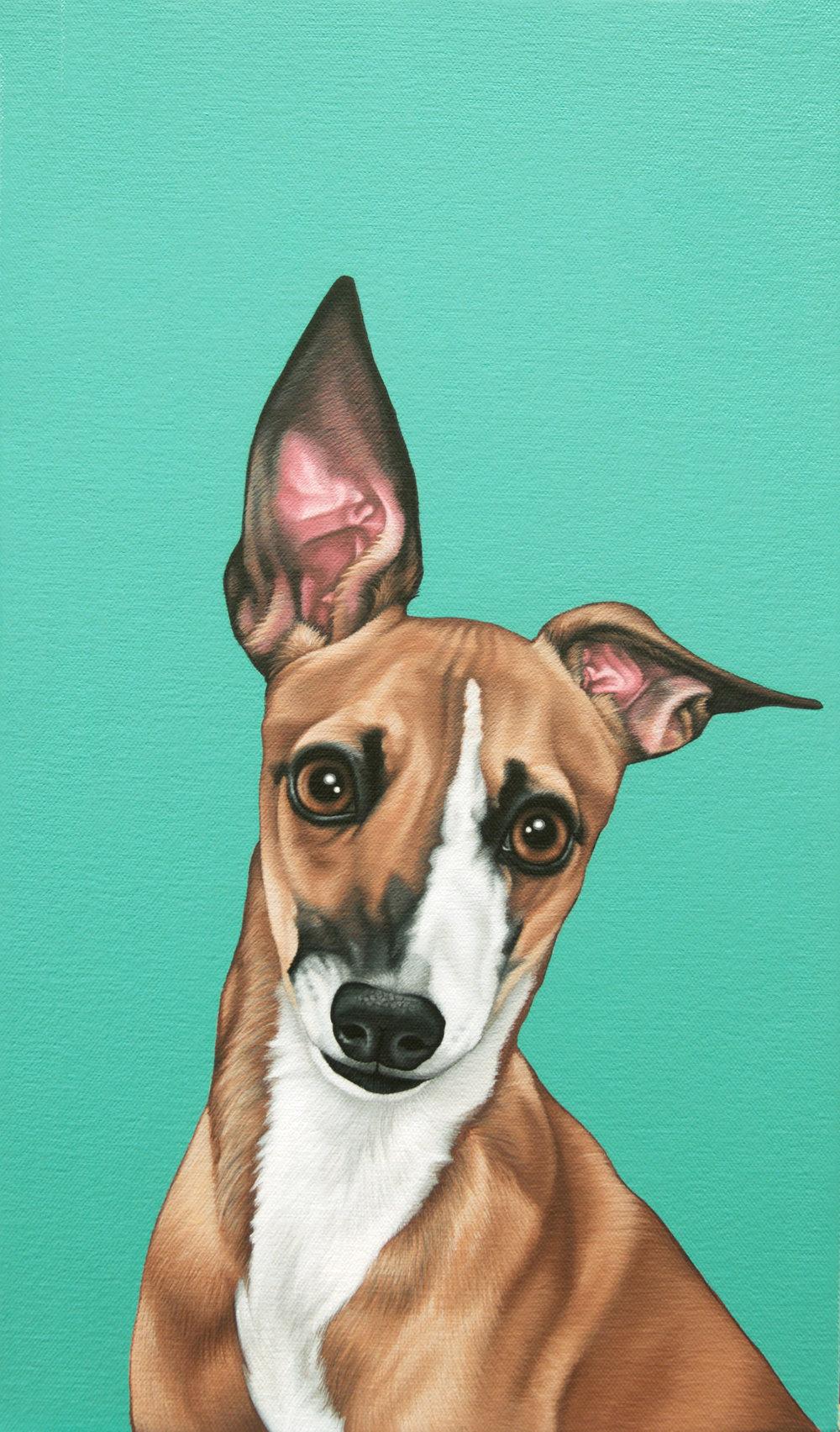 """""""Warren"""", latex enamel on canvas, 11"""" x 17"""", 2017"""