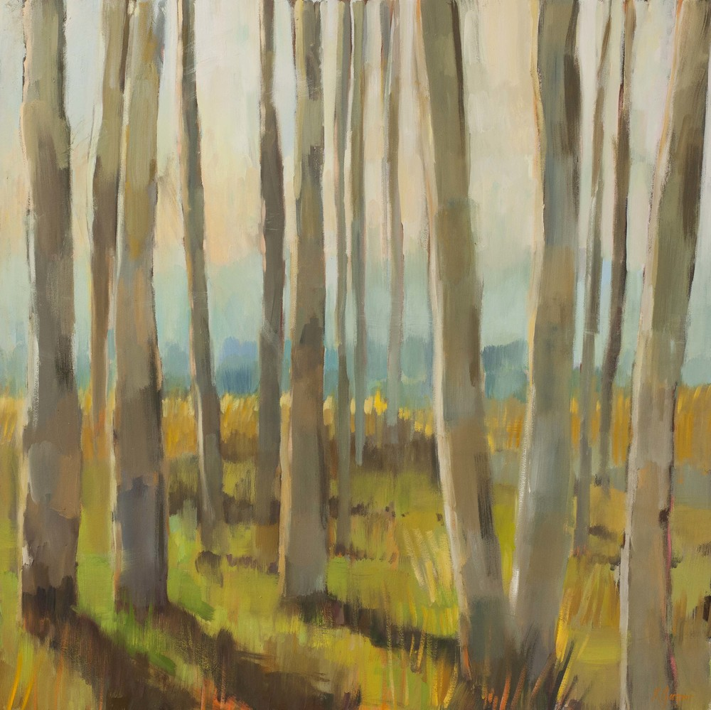 Winter Aspens  48 x 48 inches Oil on Canvas
