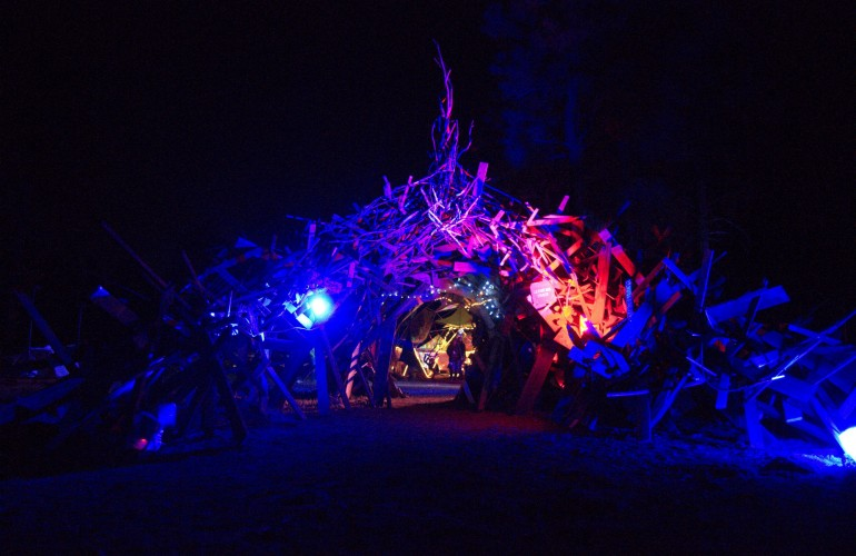 Portal, FireFly Gathering 2014, Flagstaff, Arizona, USA