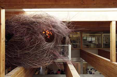 Nest, W+K, Portland, Oregon, USA (w/ Patrick Dougherty)