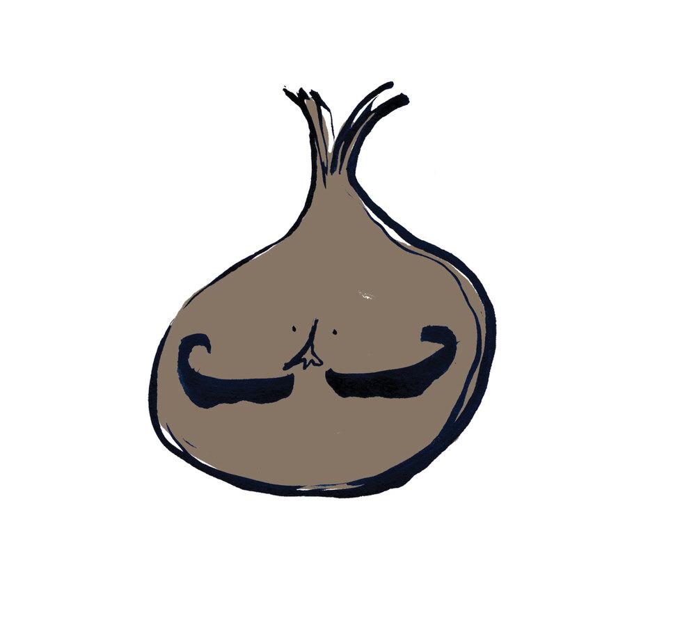 onion_b.jpg