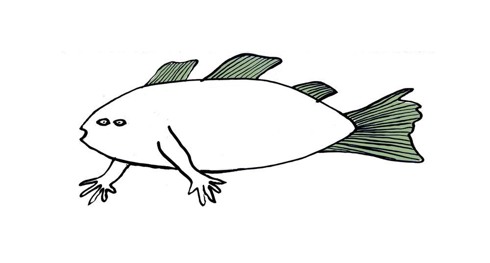 fish_fingers_b.jpg