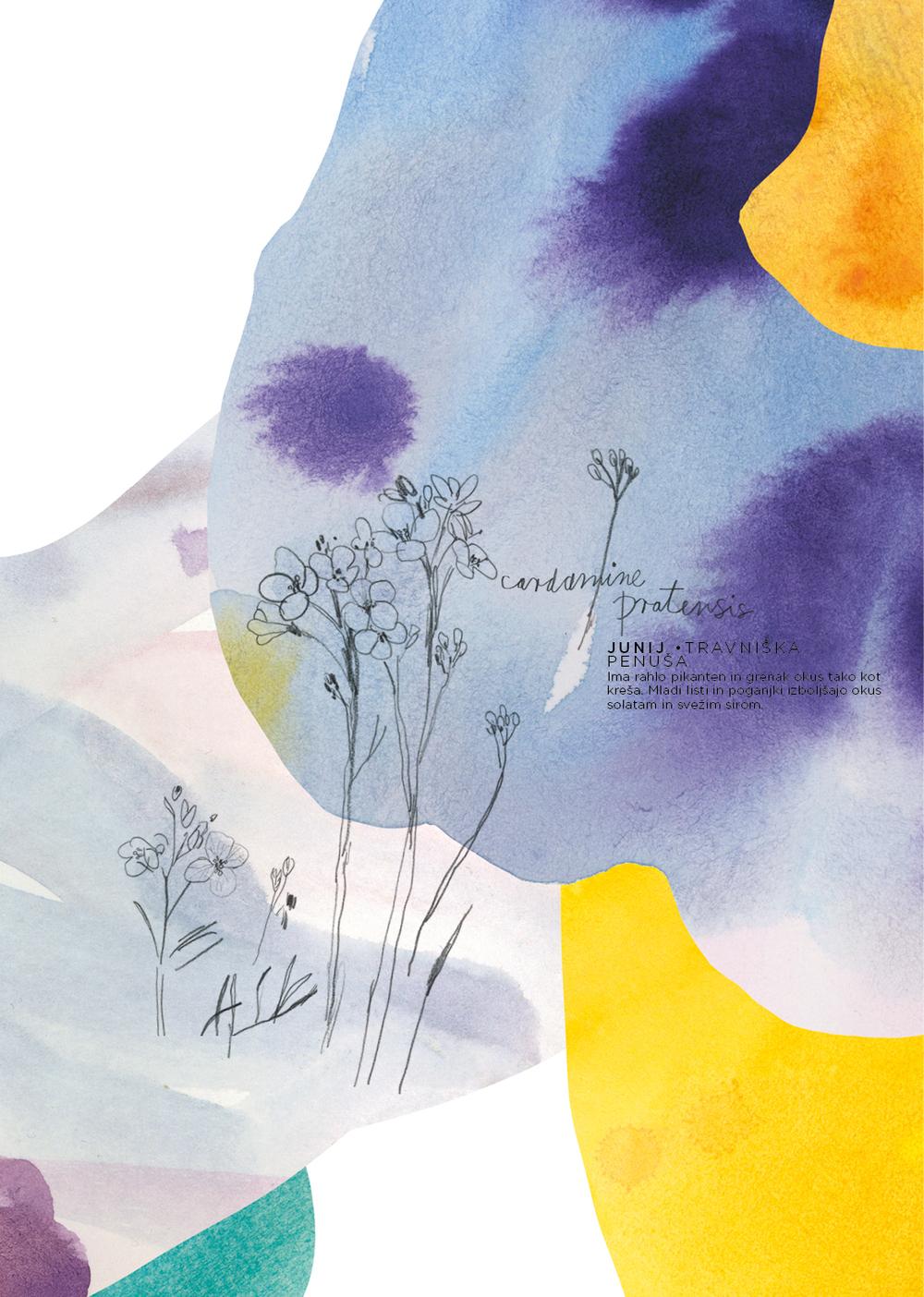 META _FlowerPower7.jpg